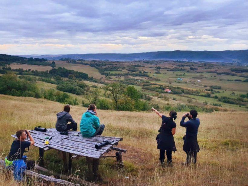 Romania-Wildlife-Tour-Group