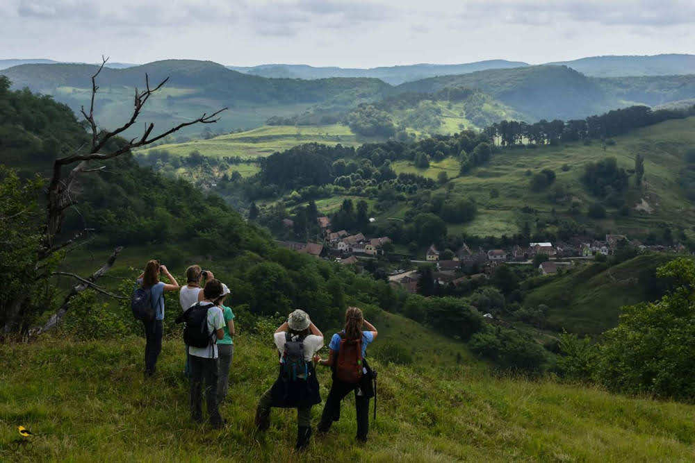 Group Bird Watching over a Romanian Valley to support conservation