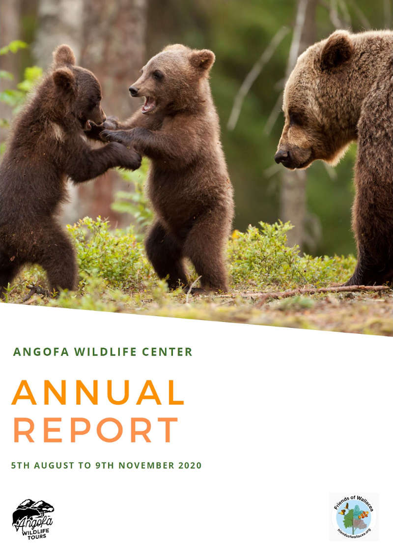Front Page of the 2020 Angofa Wildlife Centre Report detailing our achievements and biodiversity records of fauna observation. PDF of full 15 pages available by email